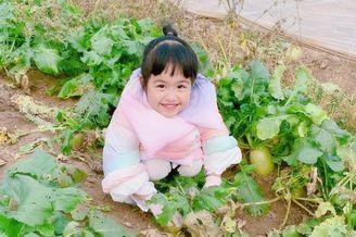 饺子蹲地上手握萝卜可爱满分