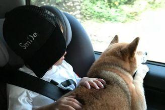 Ella带儿子和爱犬出游
