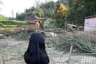 李湘女儿采摘看鸡不亦乐乎