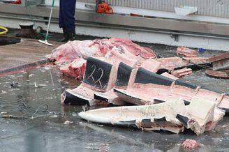 冰岛人捕杀蓝鲸肢解销往日本