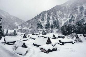 茫茫大雪的静谧时刻