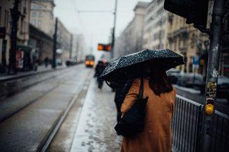 回顾冬日的温暖时刻 光影洒落的街头日常
