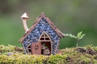 """""""鼠生""""赢家!英国摄影师为老鼠建立精美休养所供其玩耍"""