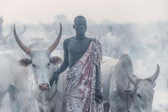 悠远非洲游牧部落纪实