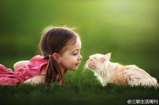 妈妈镜头中的女儿和动物