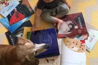 张梓琳陪读女儿爱犬在旁
