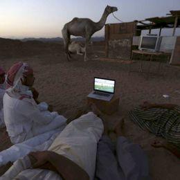 全球各地球迷看世界杯