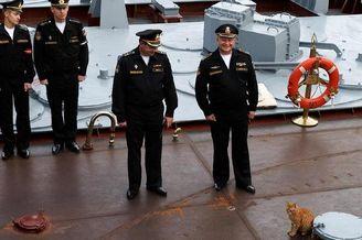 厉害!俄军舰上猫水手有编制