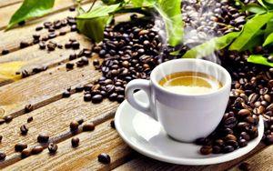 又是春来到:我的咖啡杯发芽了