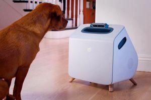 """智能宠物训练设备 让每个""""铲屎官""""都成为宠物训练师"""