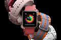 苹果春季新品:新配色表带