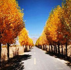 [跪了]   越过山丘才碰到的美景! http://t.cn/ROUJEHD 