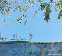 平安夜happy 不知道有没有人给我苹果吃[爱你] http://t.cn/R2dyycg 