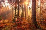 """强调画面的情绪和戏剧性 把握风光摄影里的""""光"""""""