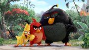 愤怒的小鸟适合拍成电影吗