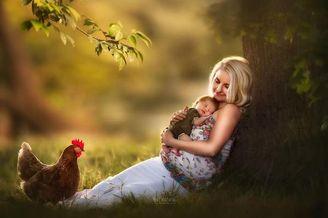 用照片诉说母性的伟大