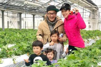 陈浩民夫妇带儿女日本摘草莓