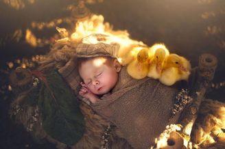 宛若天使般的婴儿摄影